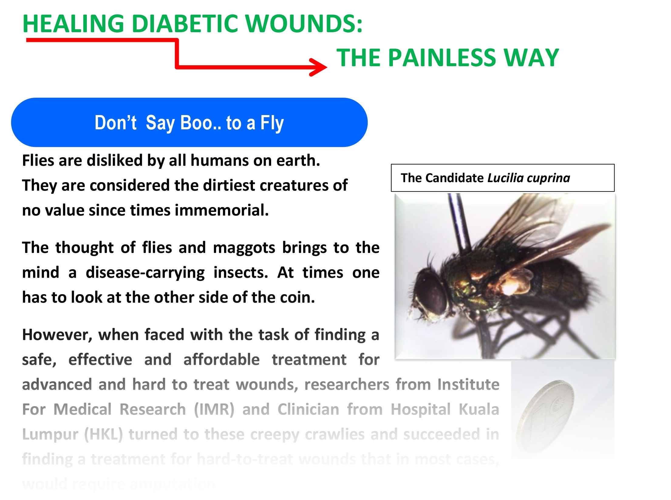 HEALING DIABETIC WOUNDS12